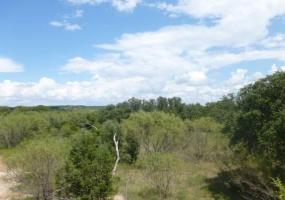 Santa Anna,Texas,Farm/Ranch,1017