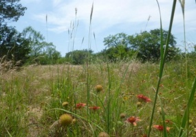 1201 Fm 2525, Early, Texas 76802, ,Land,For Sale,Fm 2525,1027