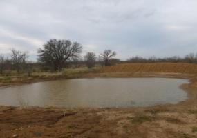000 CR 210, Coleman, Texas 76878, ,Farm/Ranch,For Sale,CR 210,1042