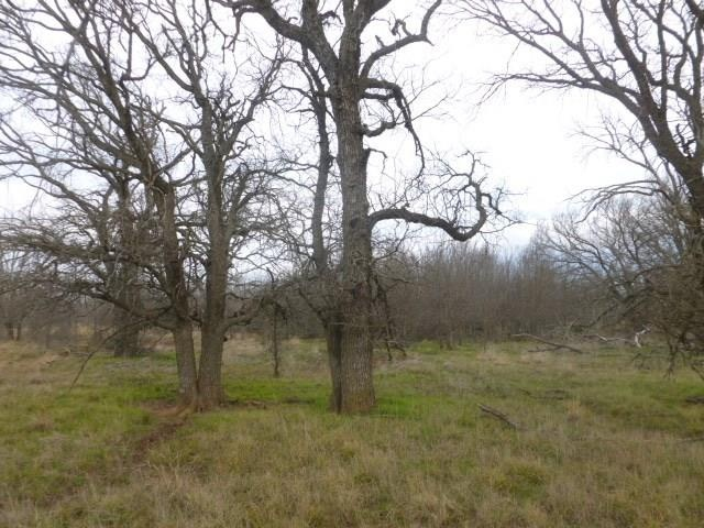 000 CR 210, Coleman, Texas 76878, ,Farm/Ranch,For Sale,CR 210,1042